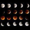 Here's a composite photo showing the various stages of the supermoon eclipse.  I was at our apartment in Shoreview, MN, that night and we were fortunate to have clear skies with only a few wispy clouds toward the end of the eclipse.