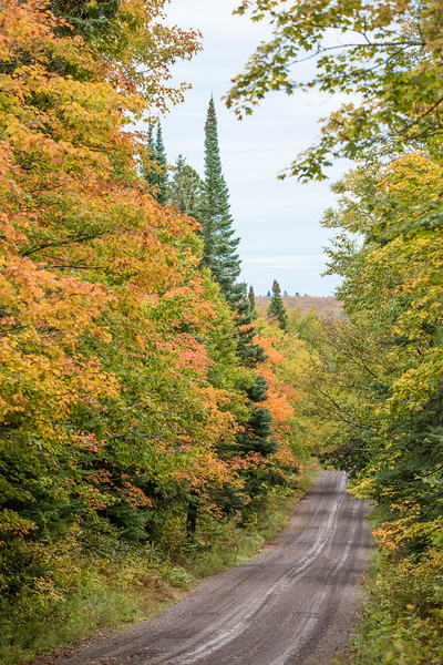 Back roads along the North Shore provide some nice vantage points for seeing fall colors.  This photo was taken at the intersection of the Temperance River Road and the 600 Road in Cook County.