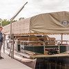 This summer, at our home in northern Minnesota, an Eastern Phoebe decided to build a nest inside our boat lift.  This is Dylan, one of our grandsons, standing on our dock.  The nest was built inside the cover of the lift in the corner right behind Dylan's head.