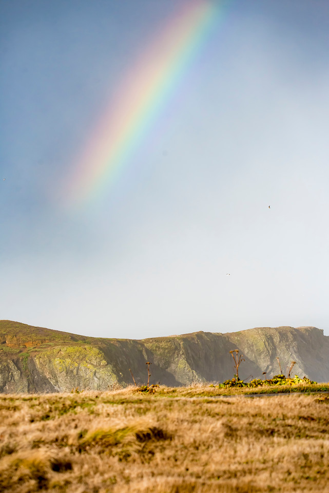 I was walking along the top of the cliff that overlooks the ocean when this rainbow appeared out over the water.  A rainbow is always accompanied by rain and it looked like it was heading my way.  I just made it back to the car before the downpour reached me.