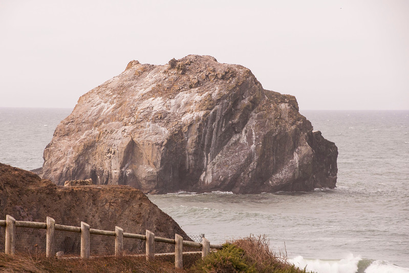 This is one of the huge rocks (called sea stacks) along the Oregon coastline.  It's been given the name Face Rock.  Use your imagination and you can make the right half of the rock look like a person's face staring into the sky at about a 45-degree angle.