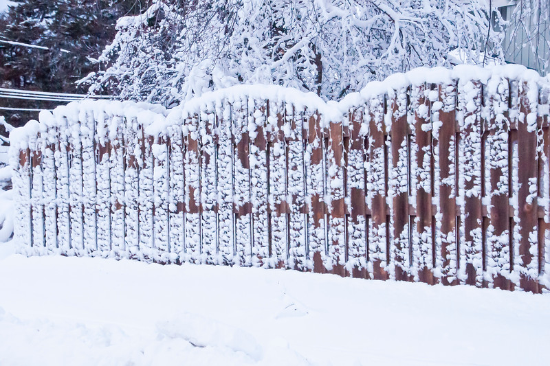 There were also positives from the storm, like the interesting pattern formed on this fence.