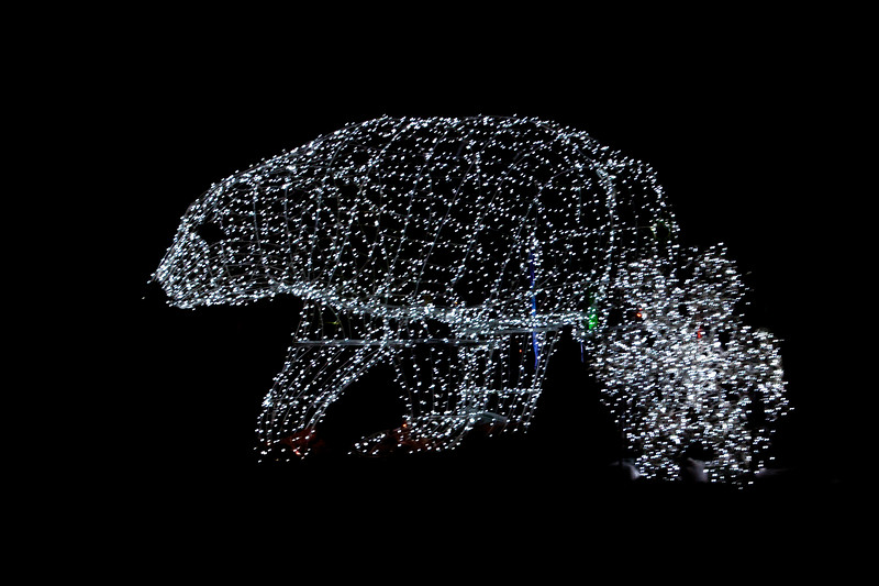 The GLOW Festival web site says they used over a million lights.  How would you like to pay THAT electric bill?  Some of the displays were simple, but well-done, like this bear.  I think that's a snowflake covering up part of the bear on the right.