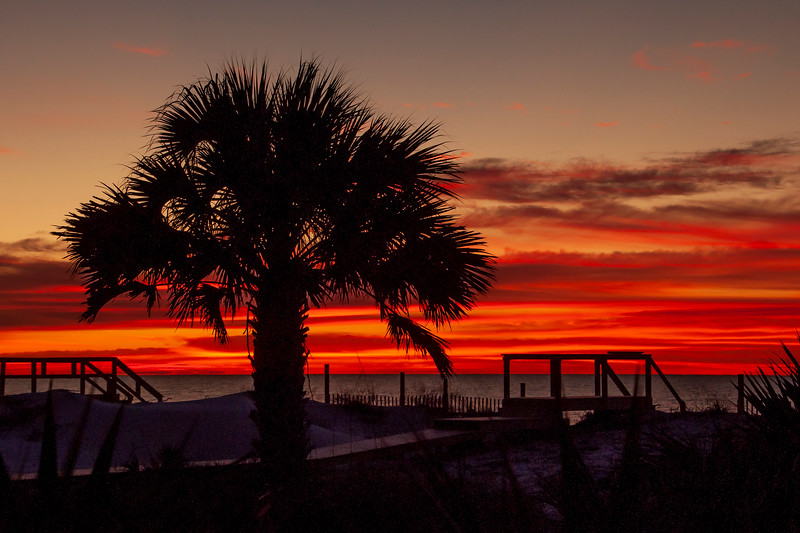 We're back in Minnesota after spending January and February on St. George Island, FL.  Here are some beach scenes from that trip.<br /> <br /> One morning I saw a beautiful sunrise and took a few photos near the house we were renting.