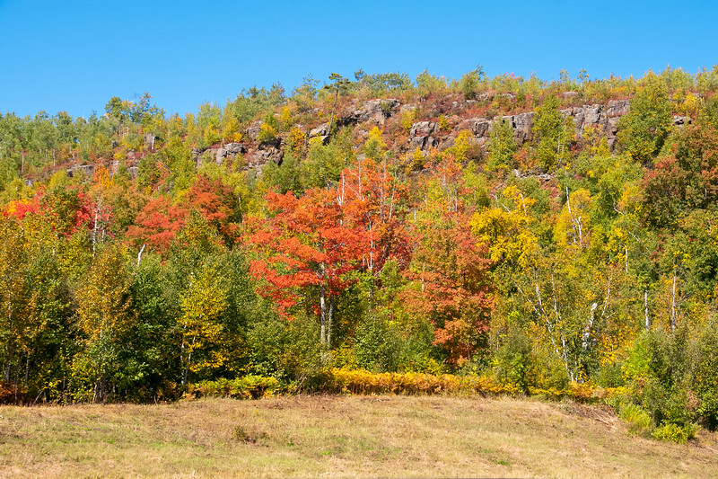During our drive back home, along Hwy 61, we saw many scenes like this: high rocky hills with trees beginning to show their fall colors.  This photo was taken near Silver Bay, MN.