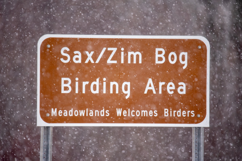 """About three weeks ago, I made a trip to the Sax Zim Bog, one of the premier birding locations in Minnesota.  It's a 300-square-mile area located about 50 minutes northwest of Duluth.  According to the Friends of Sax Zim website ( <a href=""""http://www.saxzim.org"""">http://www.saxzim.org</a>) it's the largest bog at the southern end of the boreal forest.  As you can see, it was snowing hard when I arrived."""
