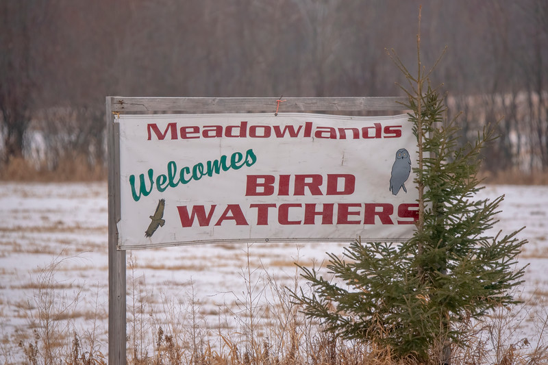 Meadowlands is one of the small towns located within the Sax Zim Bog, and they are very happy to have birders visit their part of Minnesota.