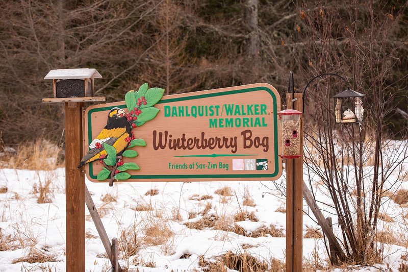 The Friends group has purchased several parcels of land within the bog to preserve them for the wildlife.  This attractive sign is at Winterberry Bog, the name given to one of those parcels.