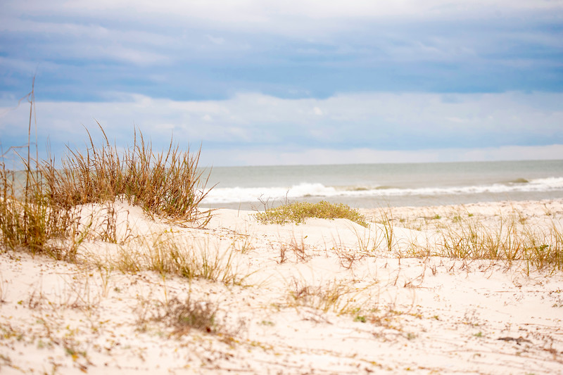 This is a typical beach scene from St. George Island State Park.  It has beautiful white sand and lots of sea oats growing on the dunes.