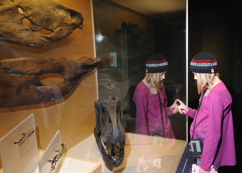 um, Clare and Clare looking at the huge carnatorurs fossils and / or looking at herself