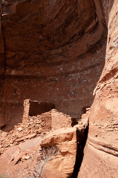 Palatki Ruins