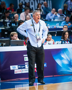 Brendan Joyce, Australia head coach