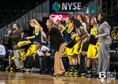 Head coach Kim Barnes Arico and the Michigan bench.