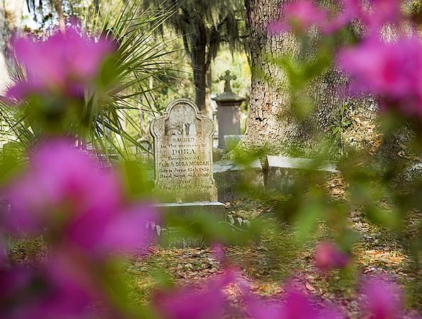 St. Bonaventure Cemetery