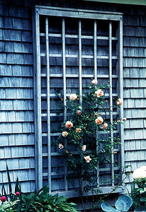 Natural Woodbury Lattice Panel Walpole Woodworkers 800-343-6948