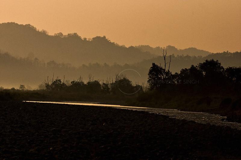Ramganga river at sunset in Corbett national park