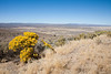 South-central Oregon Landscape