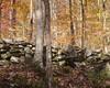 Abandoned stone wall