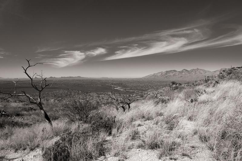 Tucson overlook