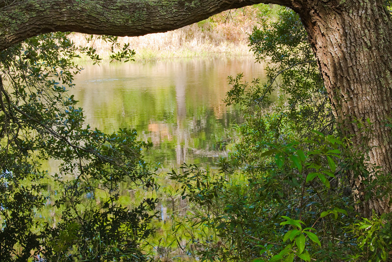 Audubon Newhall Nature Preserve