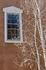 Birches and window, Santa Fe