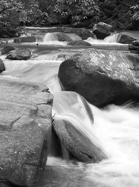 Reedy Cove Creek