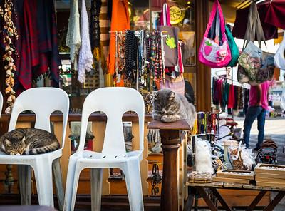 Buyukada souvenir seller's cats