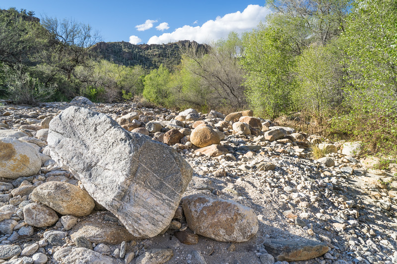 Rocky Creek Bed