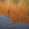 Oak Creek reflection, Sedona