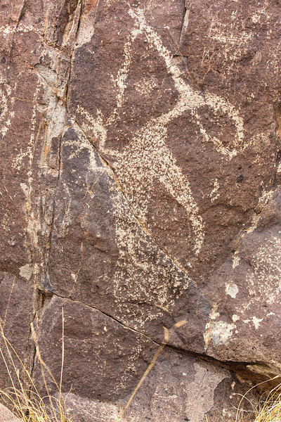 Roadrunner Petroglyph