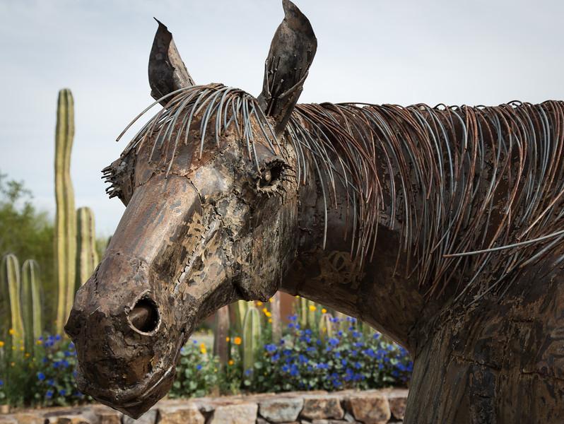 Horse sculpture, Tohono Chul, Tucson