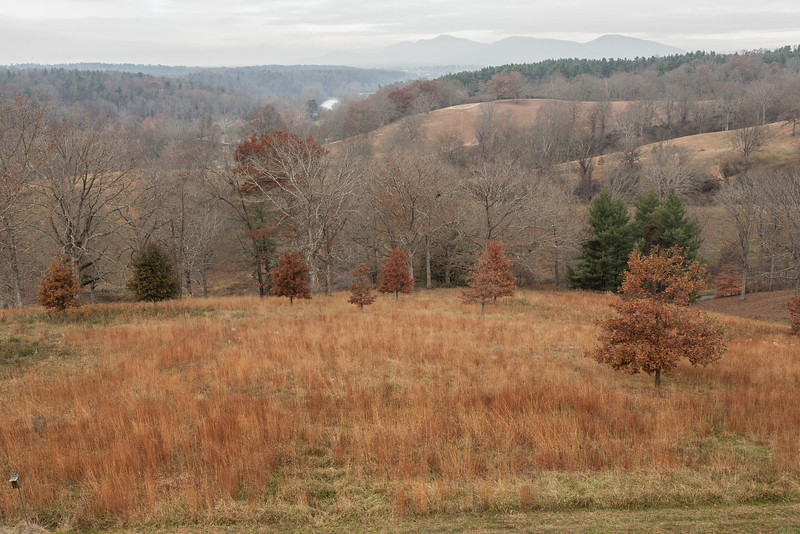 View from mansion of the Broad River Valley