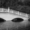 Bridge, Magnolia Plantation