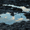 Tidepool reflections