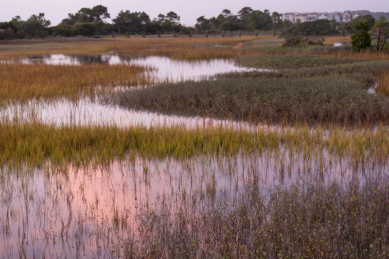 Folly Field Marsh at high tide