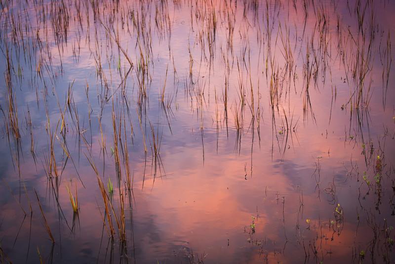 Sunrise reflection on Folly Field Marsh