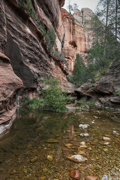 West Fork, Oak Creek Canyon