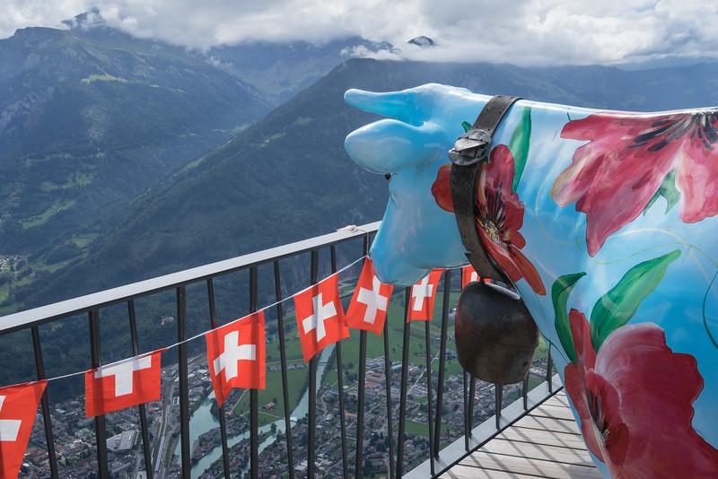 Overlooking Interlaken from Harder Kulm