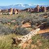 La Sal Mountains from Arches National Park