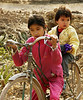 Children-on-bicycle