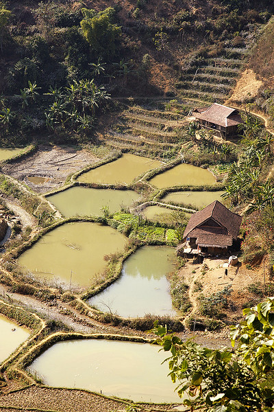 Rice-paddies-and-terraces