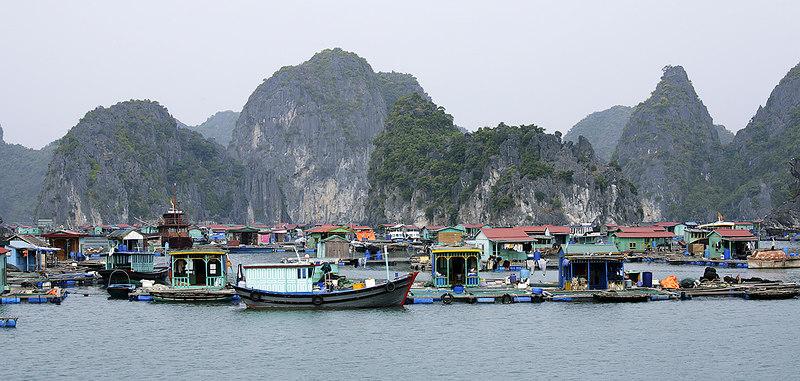 Floating village, Ha Long Bay