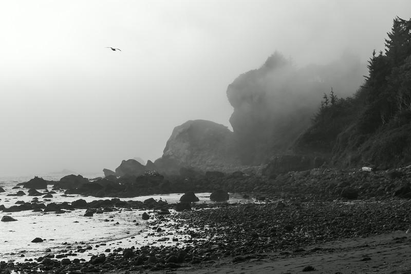 N. California coast