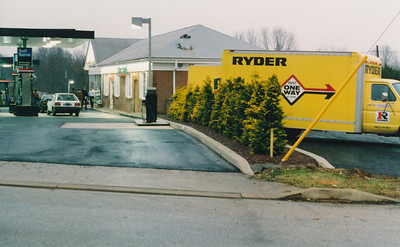 Golden Hinoki Cypress privacy screen at Padonia Amoco, early 1990s