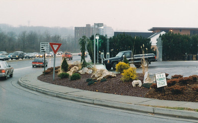 Padonia Amoco Roadside planting project, early 1990s