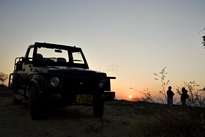 Silhouette of a tourist safari vehicle in Sawai Man Singh sanctuary in Rajasthan