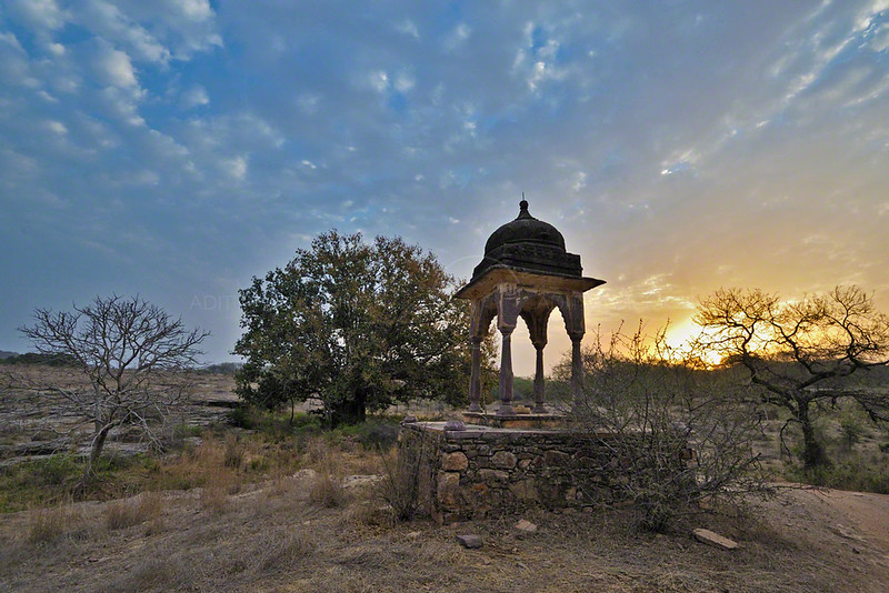 """The """"small"""" chattri at sunrise"""