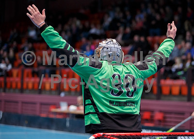 2015-01-17 Göteborg-Lerum MW9299