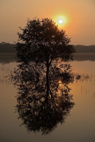 ADS_Sri Lanka_000052471