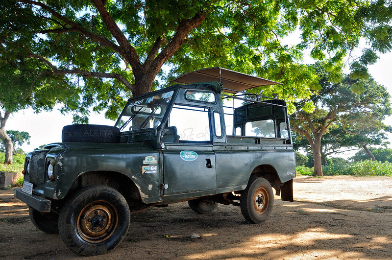 Land Rover cars of the Yala national park in  Sri Lanka